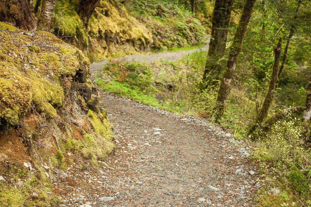 A winding trail…