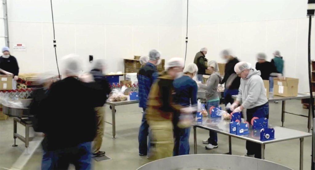 REI crew volunteering at Northwest Harvest